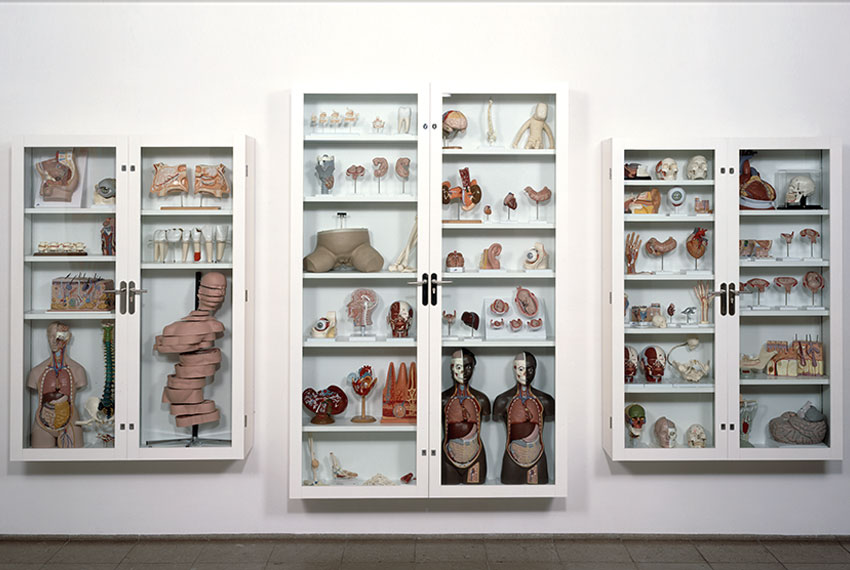 Damien Hirst Trinity – Pharmacology, Physiology, Pathology, 2000